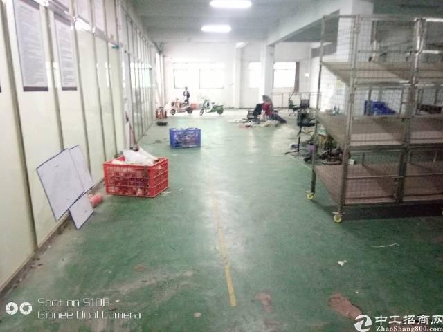 龙华民冶一楼900平厂房出租-图5