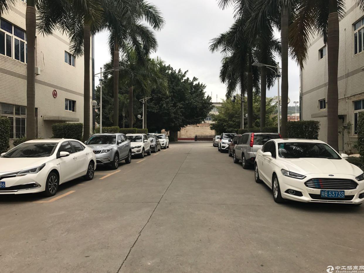 横岗永湖地铁站花园式一楼2250平招租