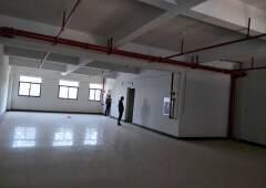 塘厦大坪写字楼3F700平出租15元双电梯
