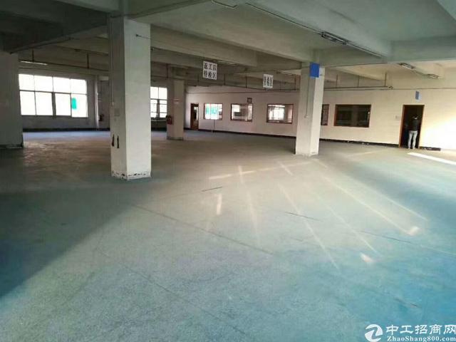 福永塘尾地铁口豪华装修厂房
