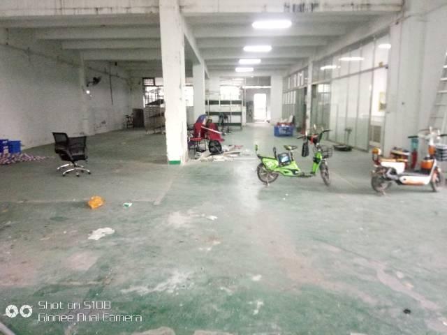 龙华民冶一楼900平厂房出租-图7