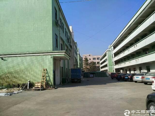 坪山1200平独院标准厂房现成水电装修地坪漆