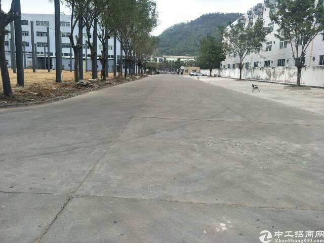 清溪高端大气工业园独栋钢构厂房6000平方招租可分租-图2