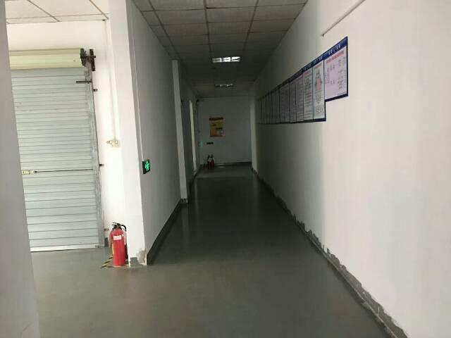 大王山楼上带装修厂房1600平方