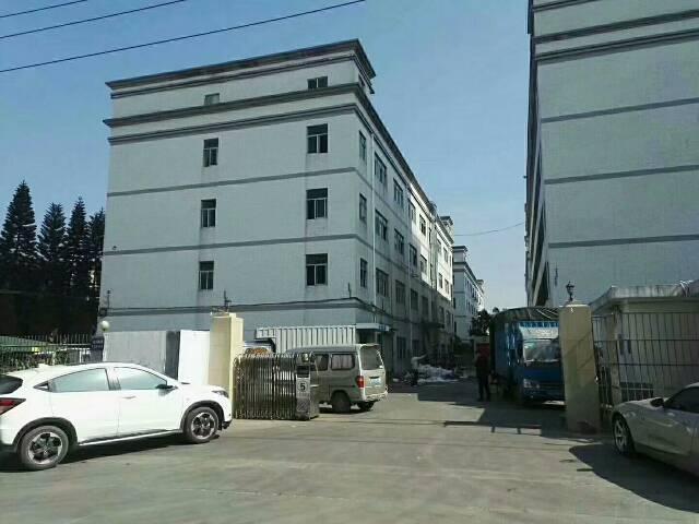 坪山700平独院标准厂房带装修现成水电地坪漆独立办公室