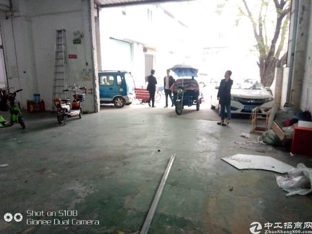 龙华民冶一楼900平厂房出租-图6