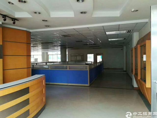 福永塘尾地铁口豪华装修厂房-图6
