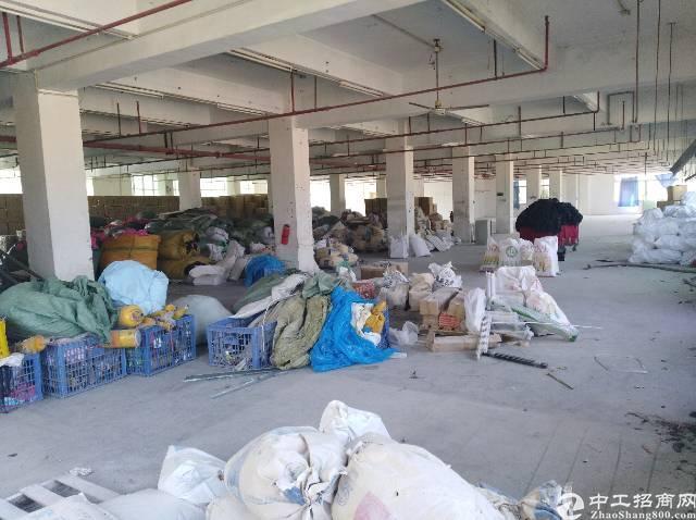 茶山镇独门独院厂房招租-图3