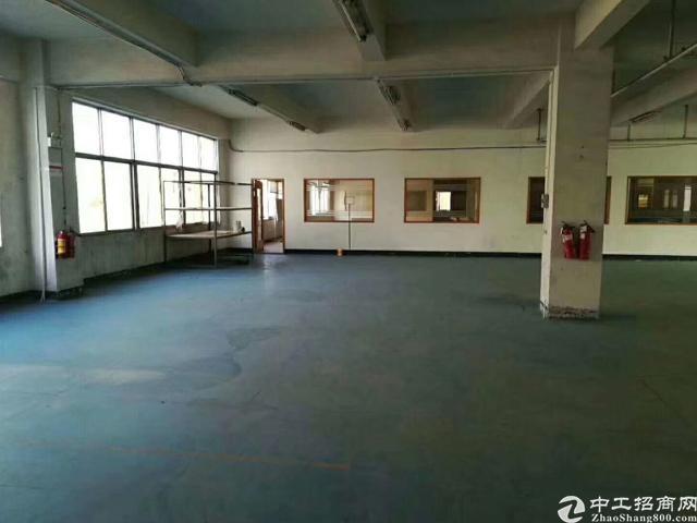 福永塘尾地铁口豪华装修厂房-图2