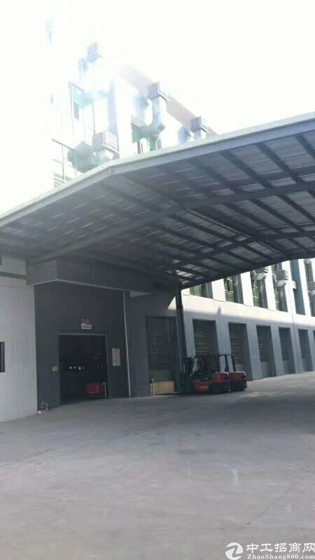惠州红本电子厂房1.4万平米出租