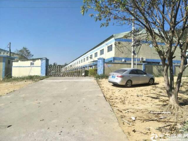 惠州 滴水十米钢构厂房4200平招租