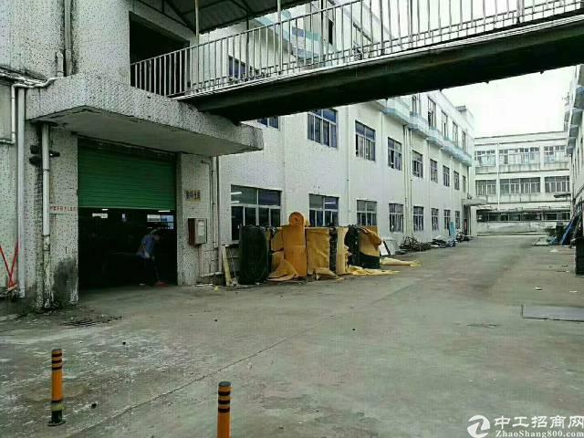 公明将石新出独栋厂房5000平米-图2
