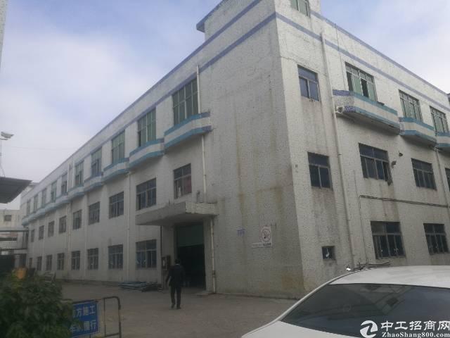 公明将石新出独栋厂房5000平米-图5