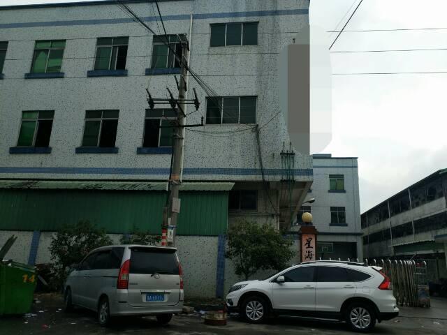 茶山镇独院厂房原房东出租-图3