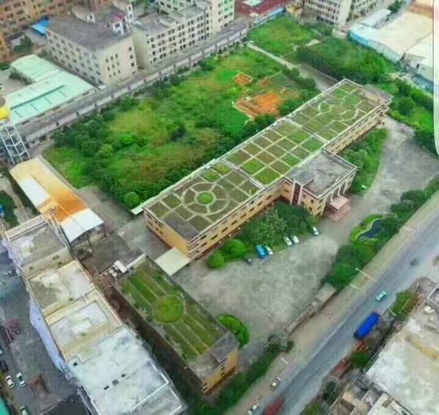 大朗镇新出12000平方标准花园厂房