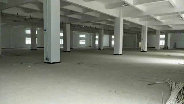 大岭山大塘新出独门独院厂房6500平米,宿舍按需原房东急出租