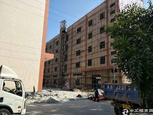 企石镇东部快线旁成熟工业区独院标准厂房20000平方