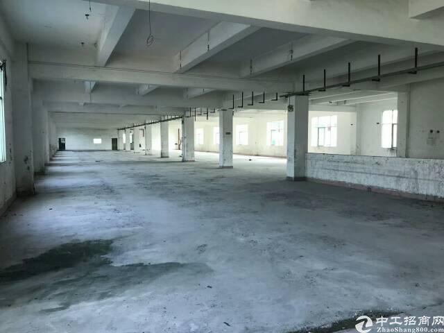[招租]离公明1公里新出独院厂房1一3层5000㎡空地超大