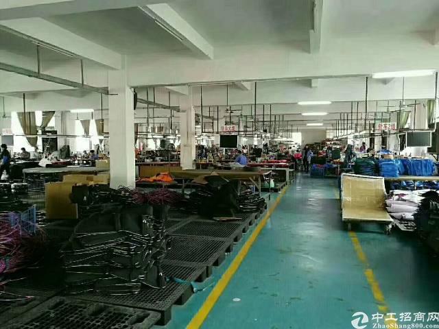 公明将石新出独栋厂房5000平米-图4