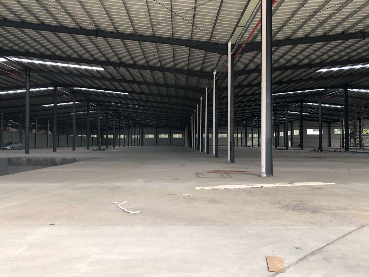 大岭山镇大塘村107国道边新出全新钢构15000平方厂房出租-图2