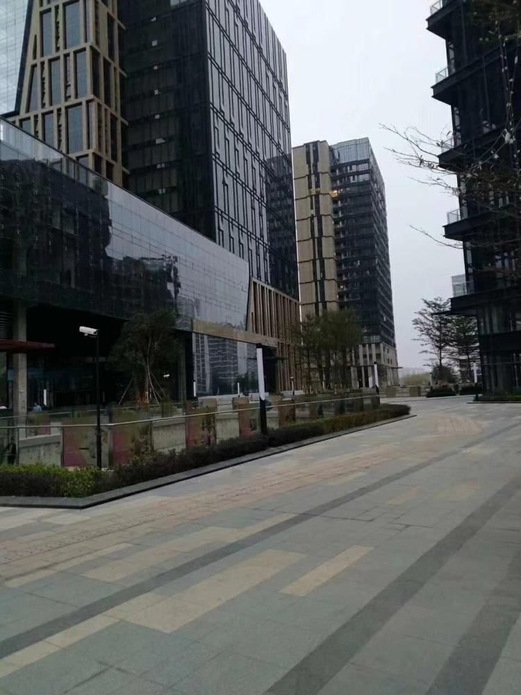 布吉李朗全新办公大楼-图5