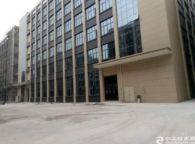 靠近深圳21000平方全新独院厂房出租-图2