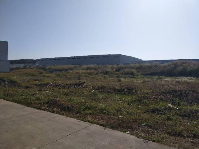 坑梓沙田空地25000平米原房东出租可硬化三通一平大小可分租