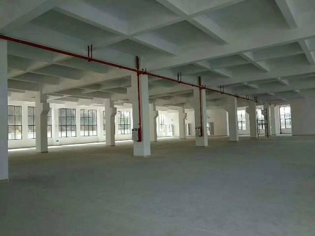 靠近深圳21000平方全新独院厂房出租-图4