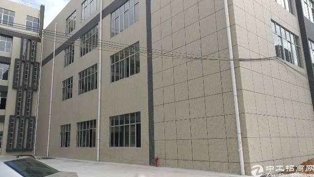 平湖平龙路大水坑收费站全新厂房5万平方米独院或分栋出租-图7