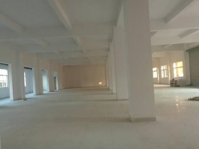 平湖华南城全新独院电商产业园2800平方米出租