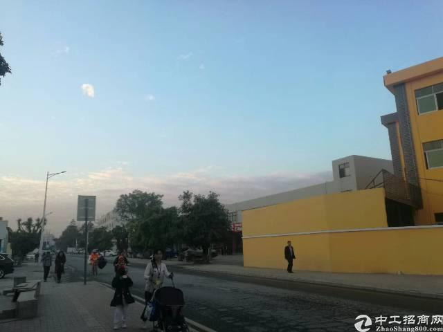 平湖华南城全新独院电商产业园2800平方米出租-图4