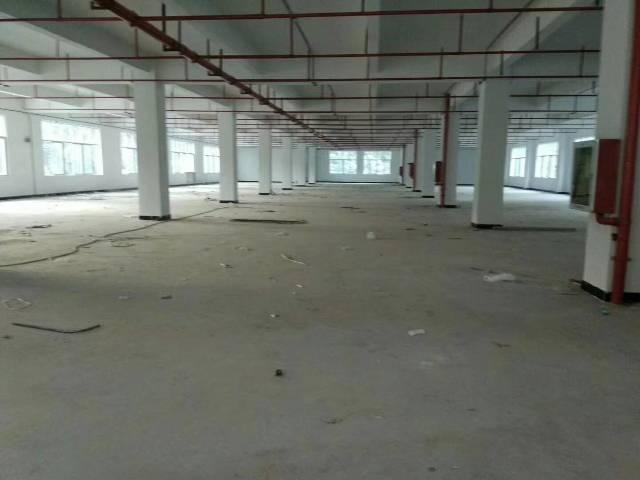 平湖华南城全新独院电商产业园2800平方米出租-图2