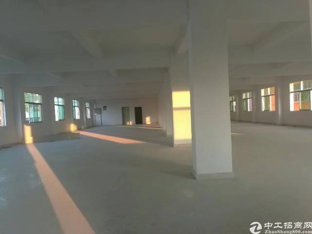 平湖华南城全新独院电商产业园2800平方米出租-图6