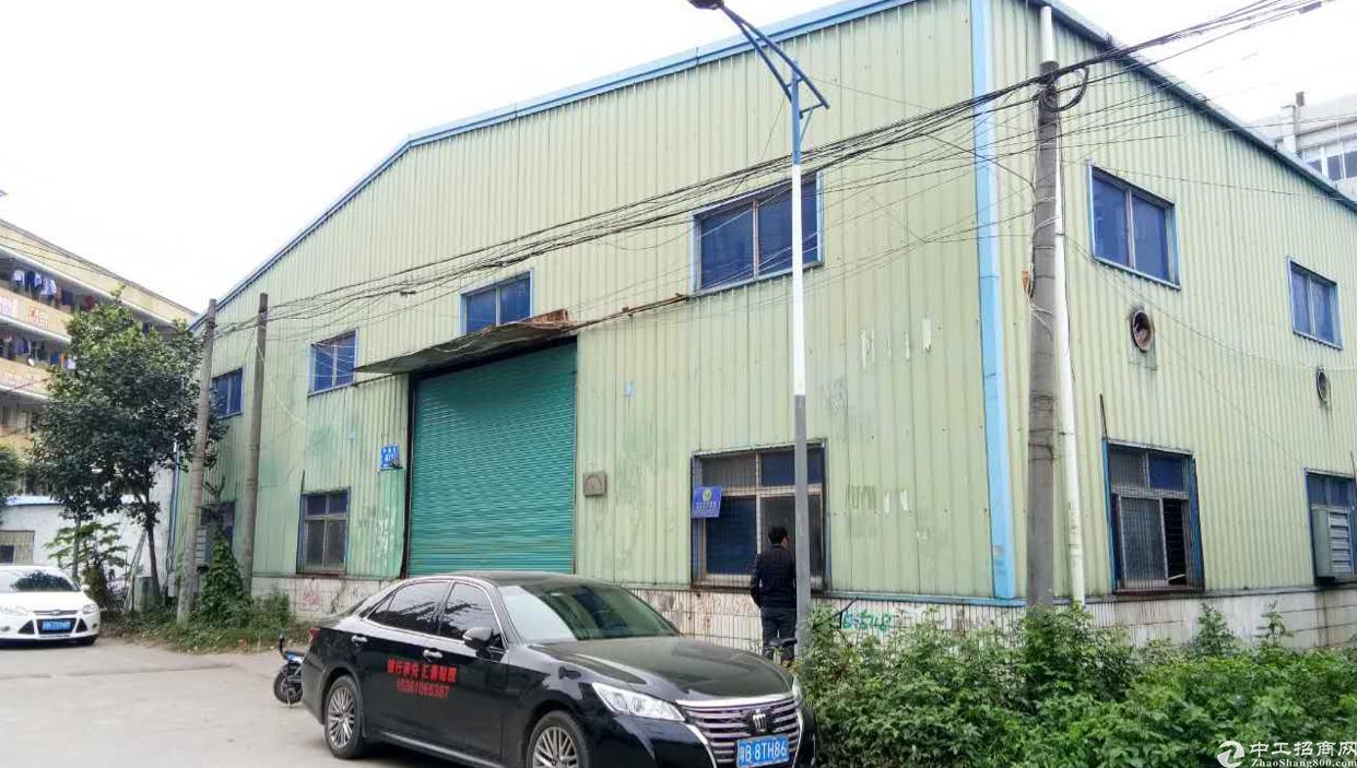 大浪独门独院滴水8米高钢构厂房招租,面积1100平米