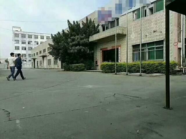 大岭山镇杨屋村新出单一层独栋厂房3500平米招租可分租-图2