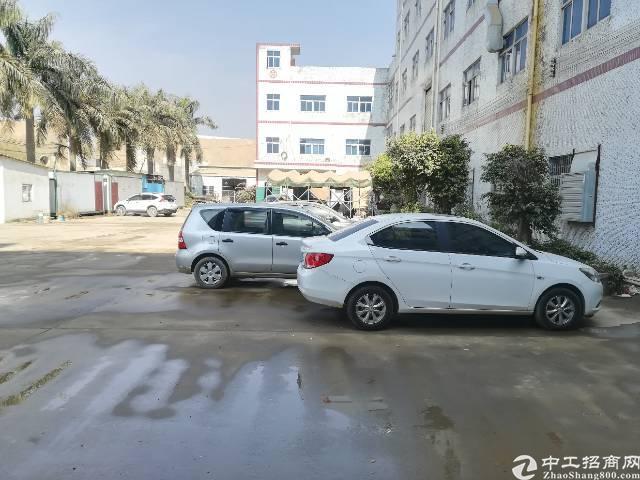 官井头小布工业区厂房