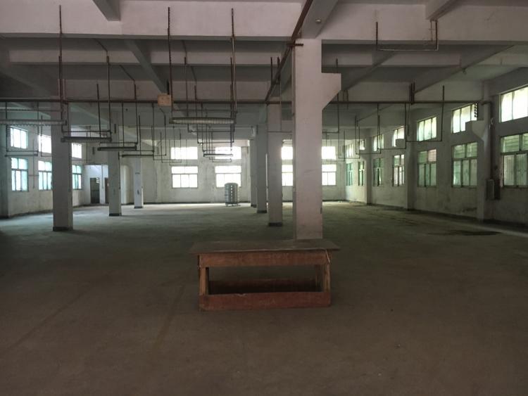 大岭山镇标准厂房1一2楼2500平方出租可分租