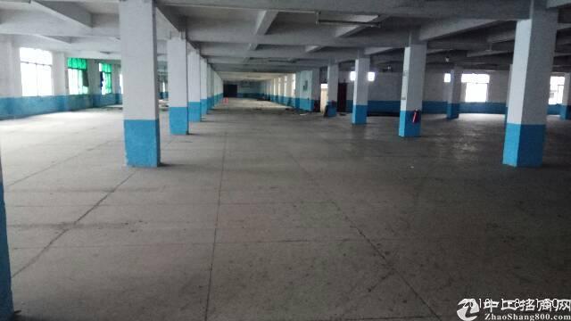 新出标准厂房12000平方1-3层,有3吨电梯-图4