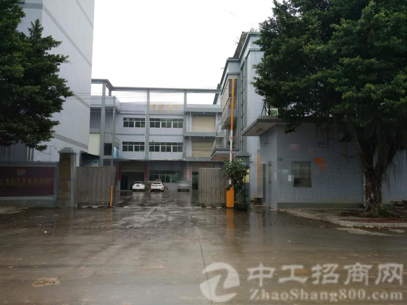 塘厦镇占地 6.3 亩建筑 6776 ㎡村委合同厂房出售