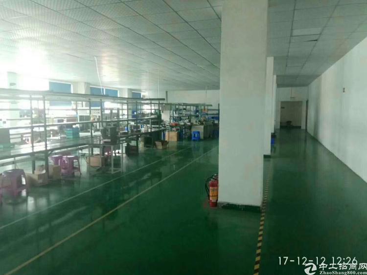 华南城附近1500平方米带装修水电齐全招租(可分租)-图4
