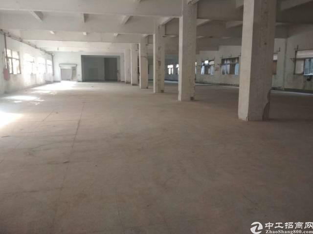 二楼一层1650平方厂房特价出租