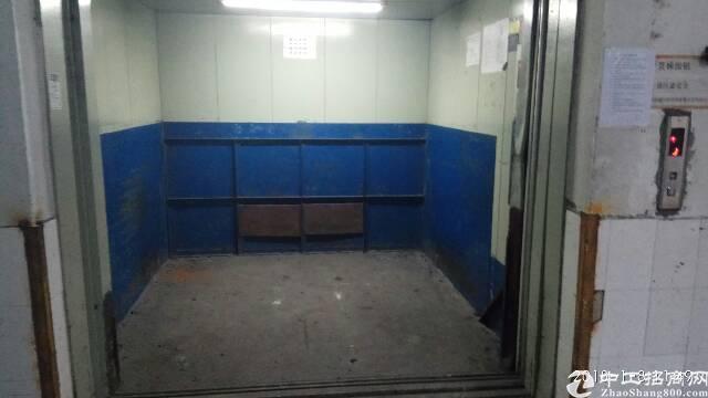 新出标准厂房12000平方1-3层,有3吨电梯-图8