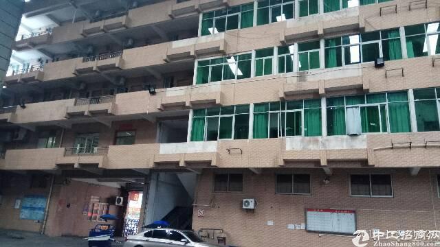新出标准厂房12000平方1-3层,有3吨电梯-图3