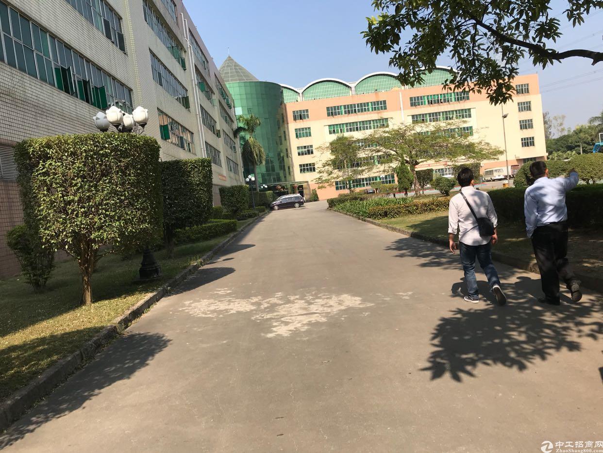 丹竹头吉夏厂房300平,400平,930平
