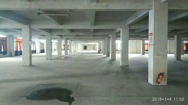 广州新塘新出独院标准厂房10000平方-图4