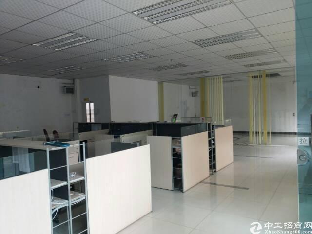 黄江镇全新独栋钢构厂房出租-图3