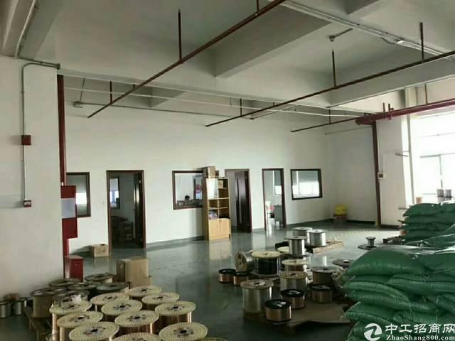 公明中心新出豪华装修厂房2500平米-图6