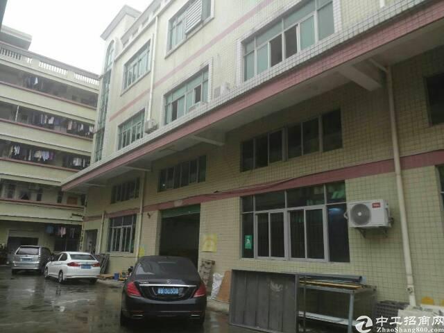 华南城边上新出一楼六米高600平方出租
