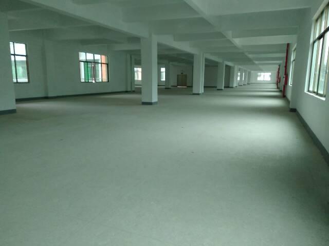 龙岗坪地新出1-2层标准厂房2000平招租
