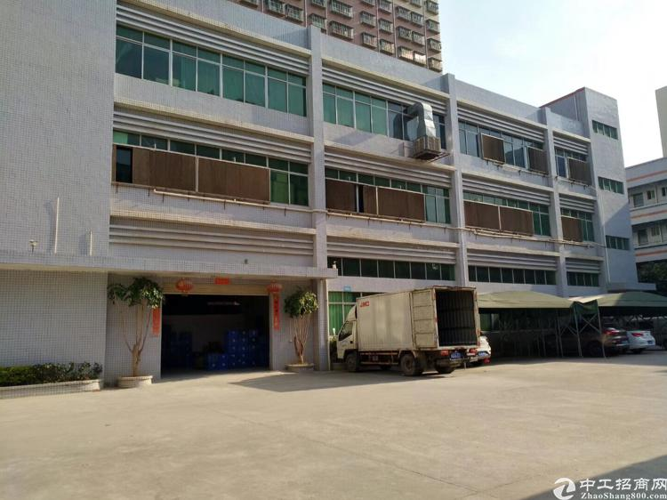 坑梓新出标准一楼1800平米带办公室装修